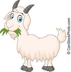 herbe, manger, dessin animé, chèvre