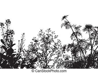 herbe, silhouette, fond