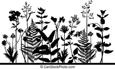 herbe, silhouette, pré, vecteur, sauvage, plants.