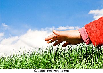 herbe, sur, main