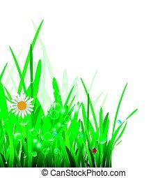 herbe, vert, border.