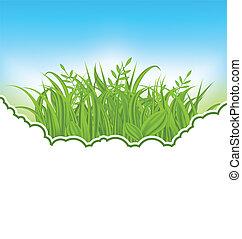 herbe, vert, carte, nature