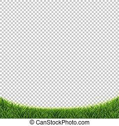 herbe, vert, isolé, fond, transparent