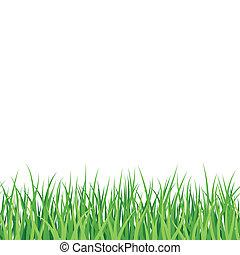 herbe, vert, seamless