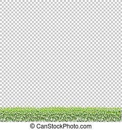 herbe verte, frontière, isolé