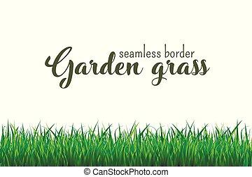 herbe verte, frontière, seamless