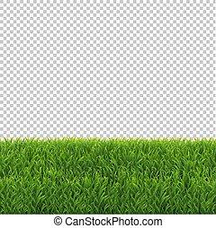 herbe verte, frontière, transparent, fond
