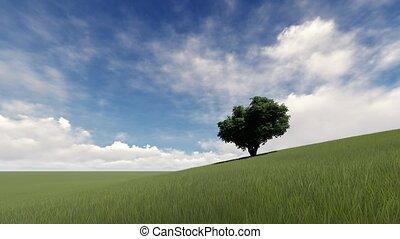 herbe verte, paysage arbre, une