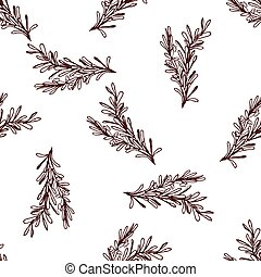 herbes, clou girofle, épices, -, collection