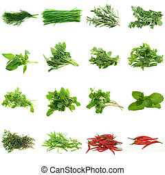herbes, collection