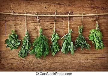herbes fraîches