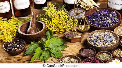 herbes, médecine alternative, séché
