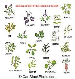 herbes médicinales, mieux, ostéoporose