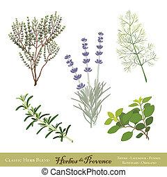 herbes provence, francês, ervas