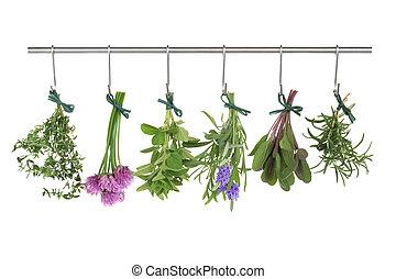 herbes, sécher, pendre