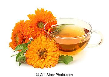 herbier, calendula, thé