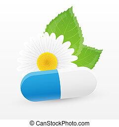 herbier, pill., vecteur, illustration.