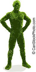 herbier, (vector), homme