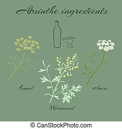 Herbs absinthe ingredients. - Absinthe ingredients. Grand ...