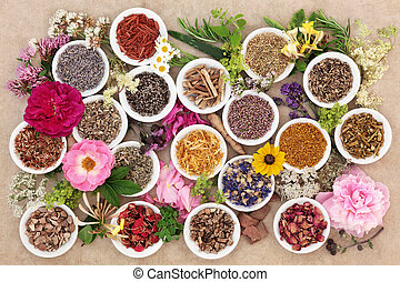 Herbs and Flowers for Healing - Herb and flower selection...