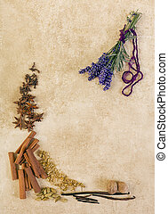 Herbs and lavender on grunge backdrop