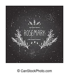 Herbs and Spices Collection - Rosemary. Hand-sketched ...