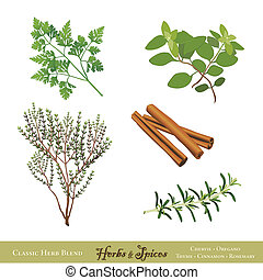Herbs and Spices for Cooking - Classic herbs and spices for...