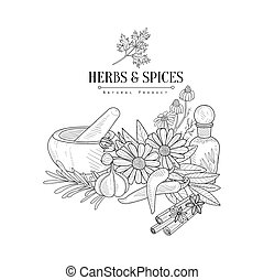 Herbs And Spices Hand Drawn Realistic Sketch