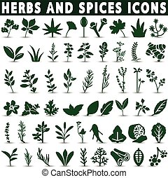 Herbs and spices icons on a white background with a shadow