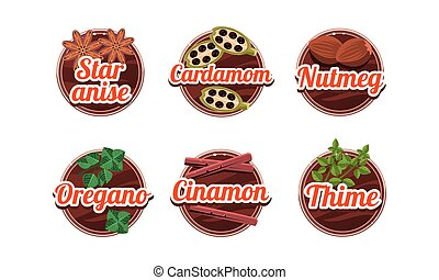 Herbs and spices kitchen badges set, star anice, cardamom, nutmeg, oregano, cinamon, thime labels vector Illustration on a white background