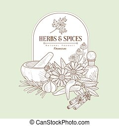 Herbs and Spices, Vector Illustration Banner