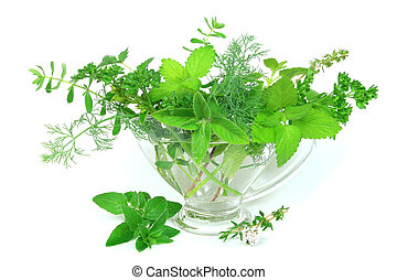 Herbs - Assortment of fresh, green herbs in a dish.