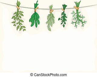 Herbs Background - Background Illustration Featuring Herbs...