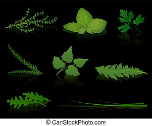 Herbs Black