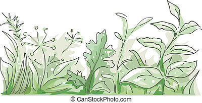 Herbs Border - Border Illustration Featuring Different Herbs