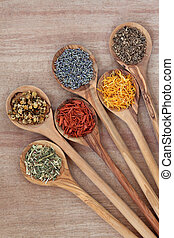 Herb selection for alternative medicinal use use in olive wood spoons over papyrus background.