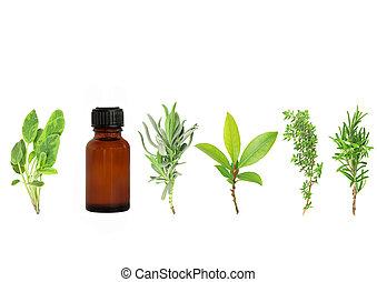 Herbs for Health - Herb leaf selection of lavender, bay,...