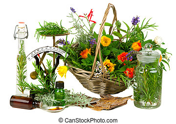 Herbs for medicine or cooking on white background