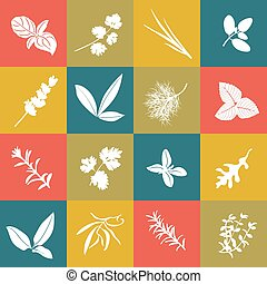 Herbs hand drawn vector big icon squared set