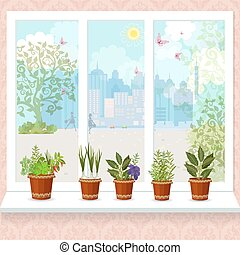 herbs in flower pots growing on a windowsill. the sunny city wit