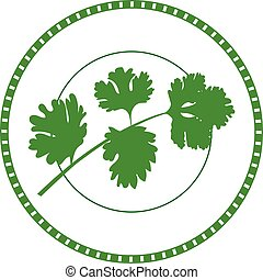 herbs labels. Stamp. Greenery collection. coriander.