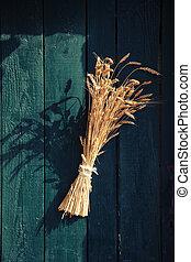 Herbs on a vintage door