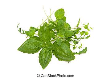 Herbs on the white