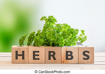 Herbs sign with fresh parsley