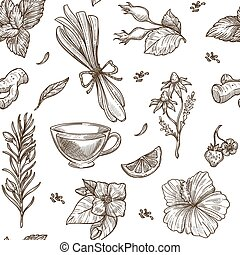 Herbs sketch pattern background. Vector seamless design of herbal tea