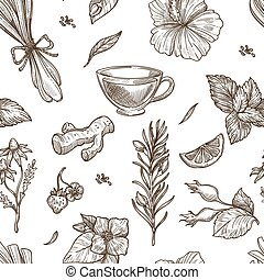Herbs sketch vector seamless pattern background