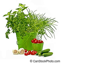 Herbs, tomatoes,cucumber and garlic in green baskets