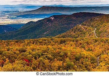 herbst, ansicht, von, der, appalachians, von, dachgeschoss, berg, shenandoah nationalpark, virginia.