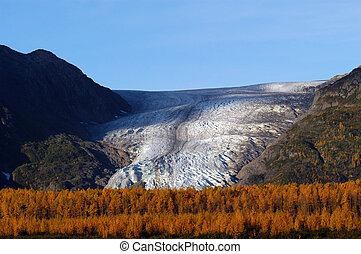 herbst, auf, ausgang, gletscher, seward, alaska