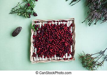 herbst, aufschließen, tisch, beeren, lingonberry, roh